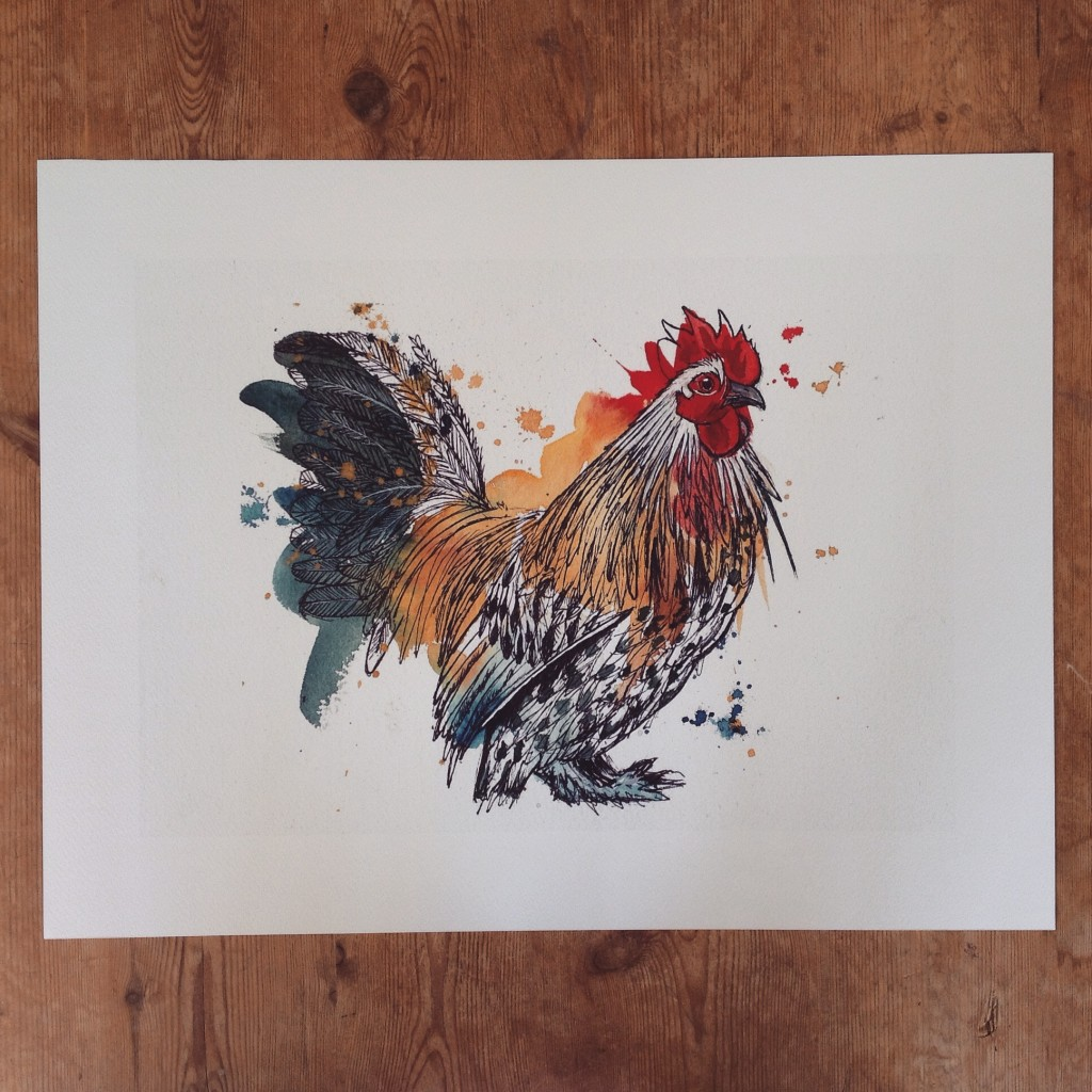 Cockerel, A3 (sold)  - prints available in online shop