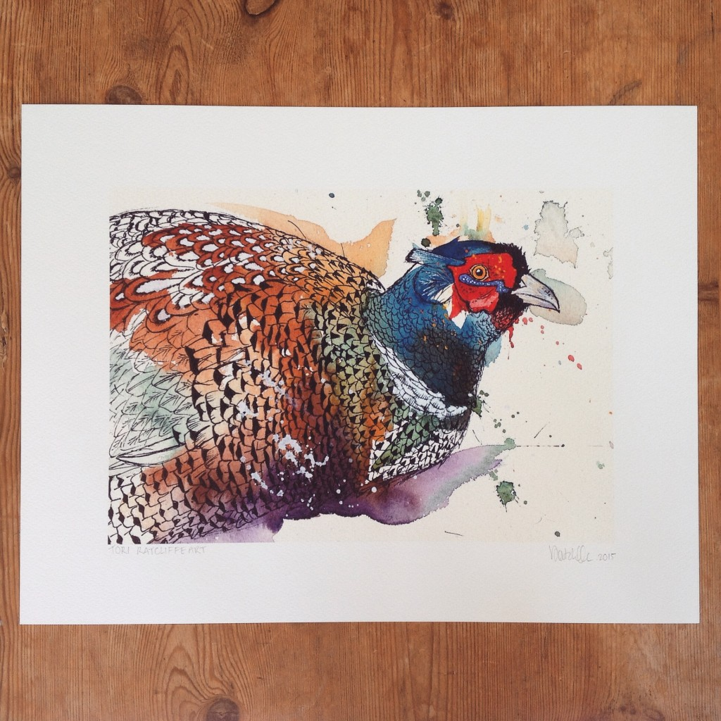 Pheasant, A4  (sold) - prints available in online shop