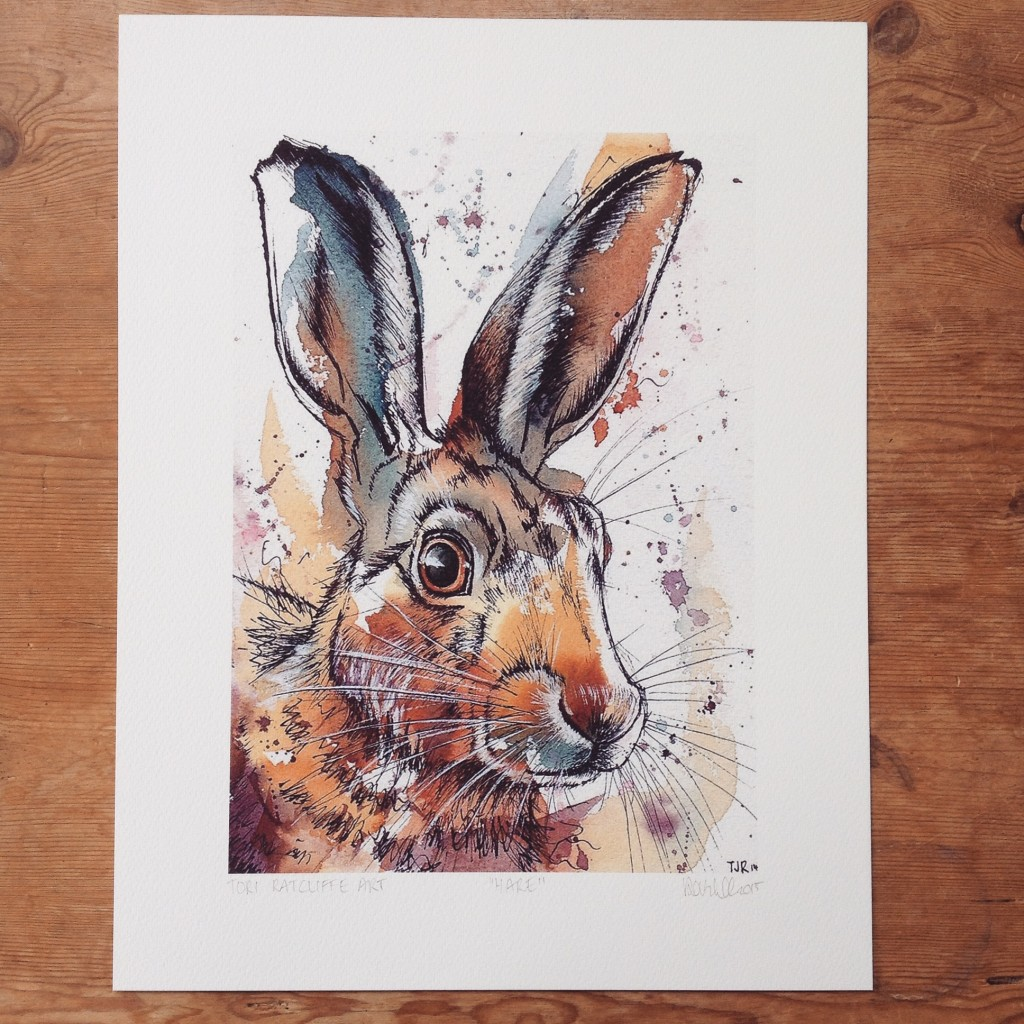 Hare, A4 (sold)  - prints available in online shop