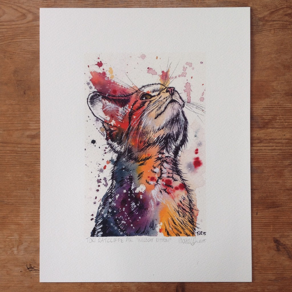 Scottish Wildcat Kitten, A5 (sold)  - prints available in online shop