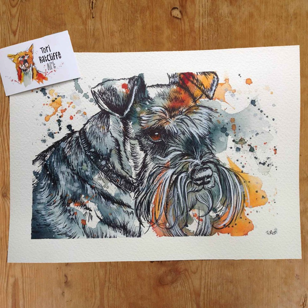 Zoey the Schnauzer, commissioned pet portrait, A4 (sold)