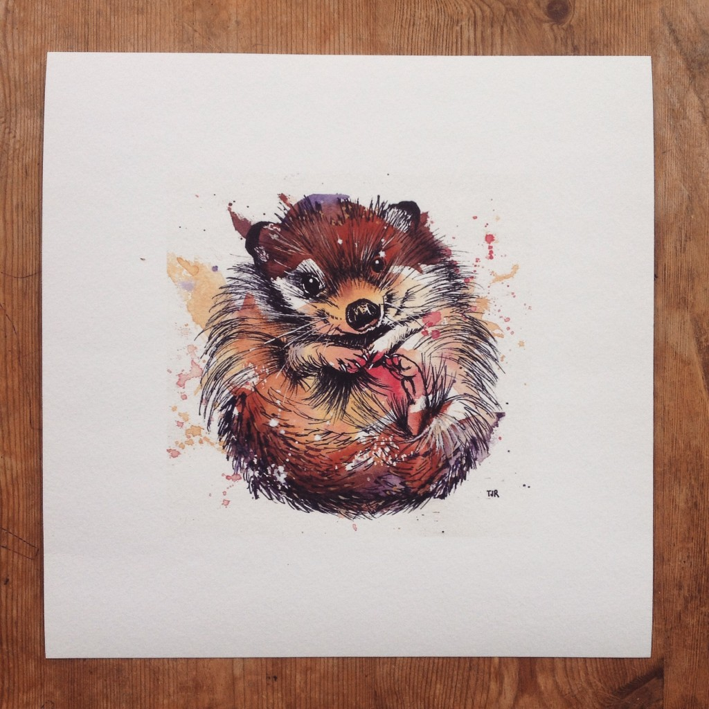 "Hedgehog, 6x6"" (sold)  - prints available in online shop"