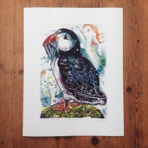 'Puffin with Fish', A4 (sold)  - prints available in online shop